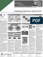 Direccion y Coordinacion Del Proyecto