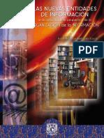 nuevas_entidades_informacion_libro.pdf