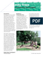 Establishing a Community Tree Program