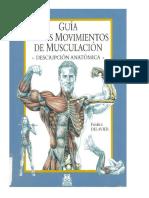 musculo.pdf