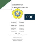 Koagulasi-flokulasi (TPL).docx