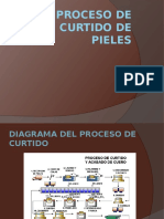 procesodecurtidodepieles PPT