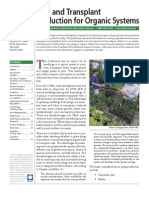 Plug and Transplant Production for Organic Systems