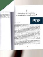 Aproximacion Historica a La Neuropsicologia Actual