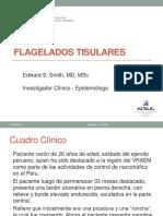Teoria 6  Flagelados Tisulares  USMP  2016.pdf