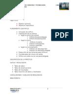 Informe Nº 1 Hidraulica II