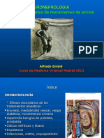 URONEFROLOGIA Indice Acciones 2013