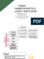 Tejido Linfohematopoyetico Histología y Patologia