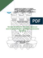 2 Tese_Samara_Cinthya_Lucena.pdf ufpb.pdf