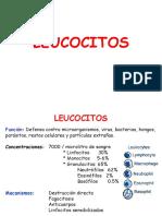 10102014 Leucocitos