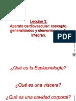 Leccion 3 Aparato Cardiovascular