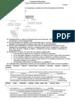 Evaluación Biología.docx