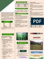 001 2010 ALFALFA.pdf