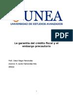 La Garantía Del Crédito Fiscal y El Embargo Precautorio