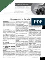 Alcances sobre el Derecho de Superficie.pdf