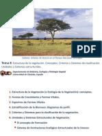 TEMA 8 Estructura de La Vegetación
