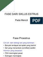 Fase Dari Siklus Estrus