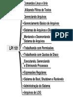 101_RESUMO.pdf