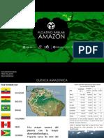 Amazonia Estruct.