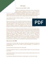 Biologia Estructura Del Adn y Arn