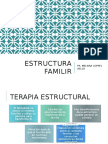 PSICOTERAPIA FAMILIAR SISTÉMICA