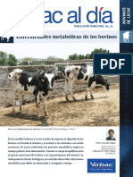 bovinos.pdf