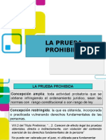 PRUEBA PROHIBIDA.pptx