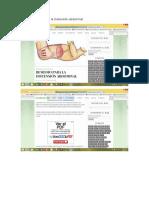 medicina natural para la distencion abdominal. L9mayo2016350pm.docx