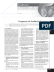 programas auditoria financiera.pdf