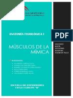 Musculos de Mimica