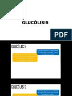 3. Glucólisis