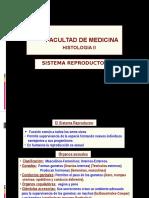 Histologia II Sistema Reproductor