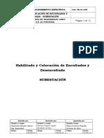 PE-01-005-Habilitacion y Colocacion de Encofrado y Desencofrado SE