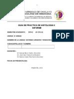 Histologia II Guia de Practica IV Unidad