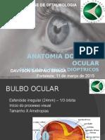 Anatomia do bulbo ocular