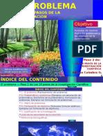 02investigacionen10pasos Paso2 120815211836 Phpapp02 (1)