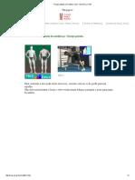 Extensão Do Antebraço Tríceps Patada