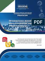 ORIENT. Metodológica Sistematización.pdf