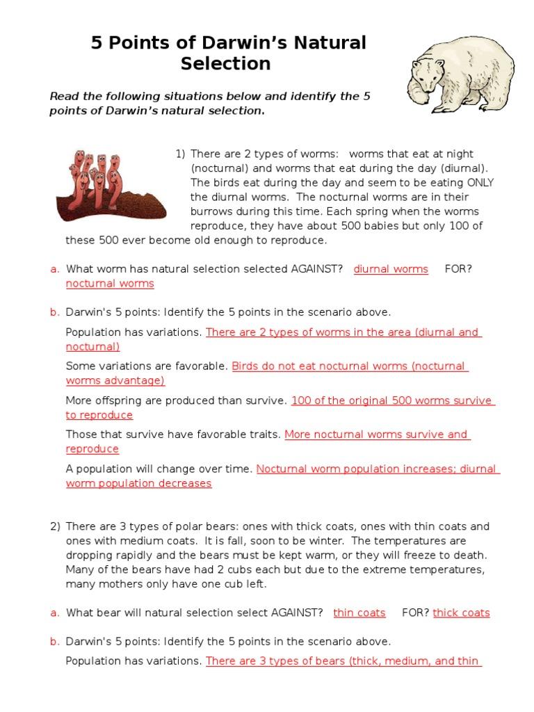 worksheet Darwins Natural Selection Worksheet 5 points of natural selection answer key 1 adaptation