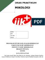 Laporan Praktikum mikologi