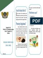 Leaflet Inisiasi Menyusui Dini (OK)