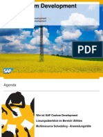 SAP Custom Development for Utilities