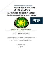 1 Informe de Petroquimica