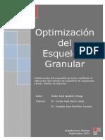 Optimización Del Esqueleto Granular