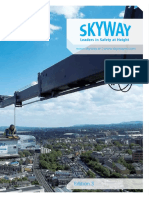 Skyway-ED-3-Web