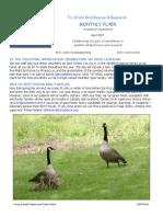April 2017 Volunteer Newsletter