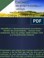 DESENVOLVIMENTO ECONÔMICO X Desenvolvimento Ambiental