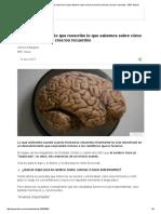 El Fascinante Estudio Que Reescribe Lo Que Sabemos Sobre Cómo El Cerebro Humano Crea Los Recuerdos - BBC Mundo