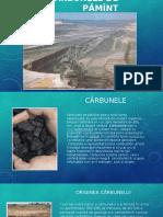 Cărbunele de Pămînt - Găină Denis