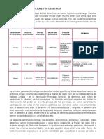 LAS TRES GENERACIONES DE DERECHOS.docx